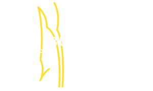 Hamburg European Open 2021